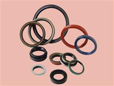 Oil Seals In MM