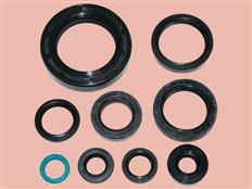 Oil Seal in Inch